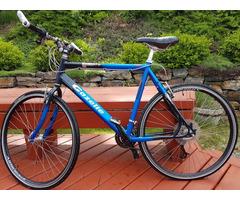 Gazelle Golfo bicylce 24 speed